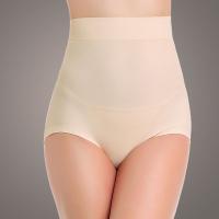 Euramerican High Waist Skin Color Nylon Panties
