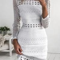 Trendy Round Neck Hollow-out White Lace Sheath Mini Dress