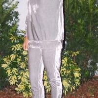 Silver Velvet Pants Plain O neck Long Sleeve Casual Two Pieces