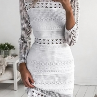 Lace Casual O neck Cap Sleeve Long Sleeve Sheath Mini Dresses
