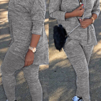 Casual V Neck Zipper Design Grey Polyester Two-piece Pants Set